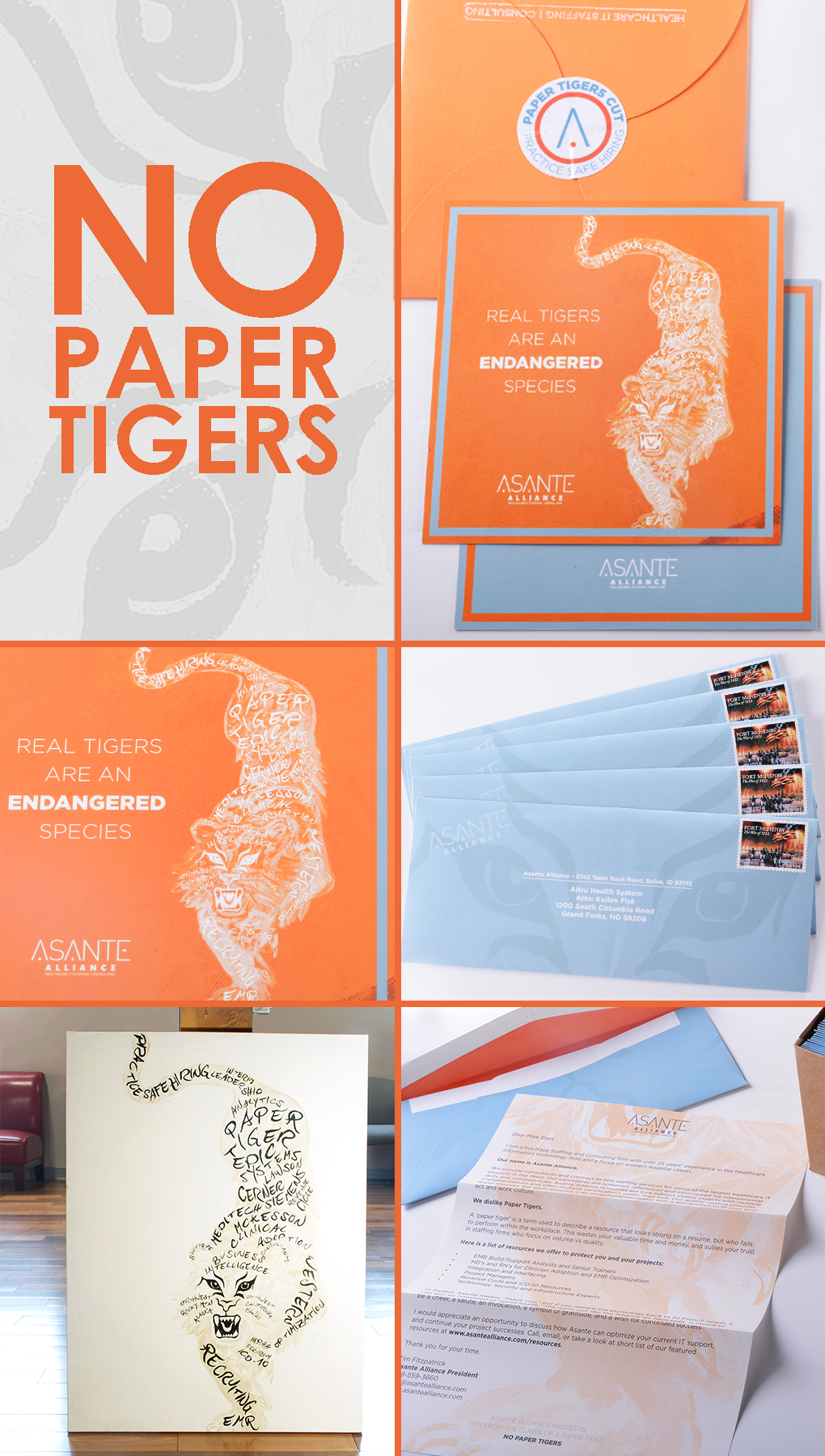 no paper tigers direct mail campaign